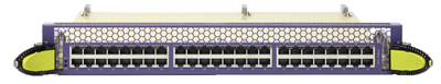 48-Port 10GbE Copper Interface Module